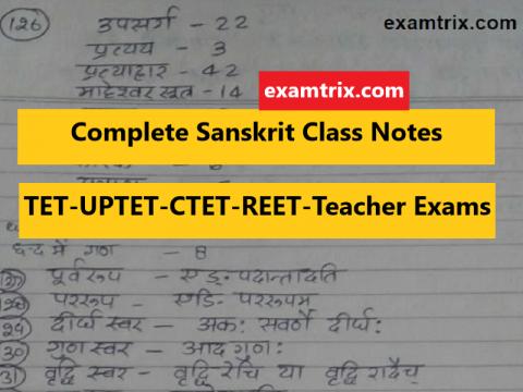 Sanskrit Class Note by VMentor Academy - TET-REET-UPTET-CTET