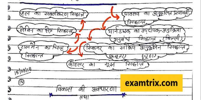 Psychology handwritten class notes TET CTET UPTET REET Teachers exam