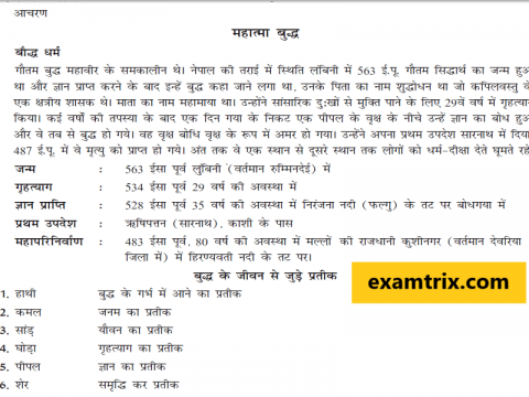 History Class Notes in Hindi For TET and CTET Exams