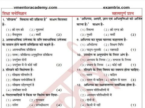 Educational Psychology Questions in Hindi PDF TET CTET