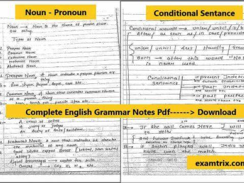 English Archives - Examtrix com