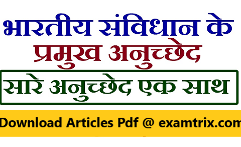 Articles of the Constitution of India Pdf भारतीय संविधान के अनुच्छेद