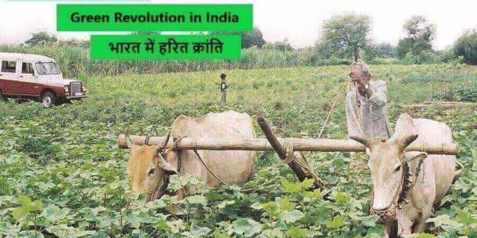 Green Revolution in India हरित क्रांति