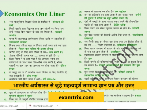 Economics Important Questions with answers in Hindi PDF