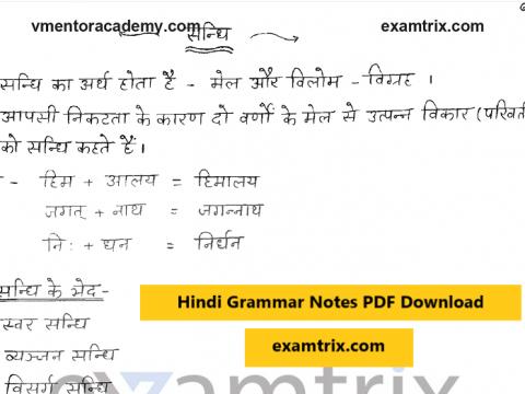 Hindi Grammar Notes PDF Download CTET RPSC RAS